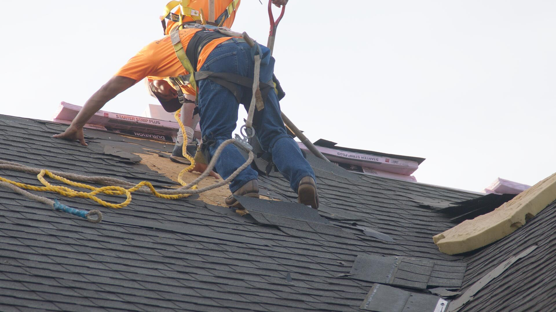 Roofers_1.21.1